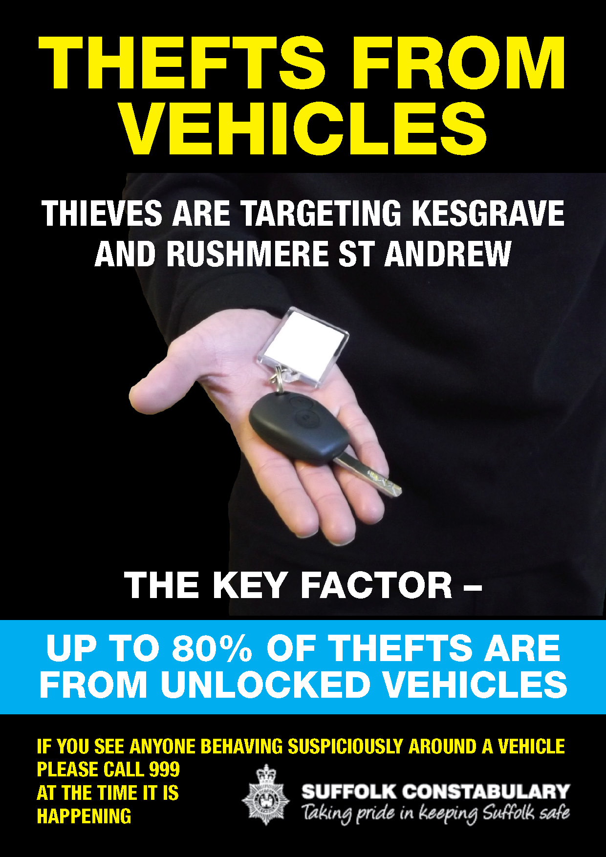 Police vehicle theft poster